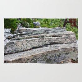 Natural Steps Rug