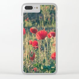 Field covered with red flowers illuminated by the sunrise sun. Flowers of delicate petals in the mea Clear iPhone Case