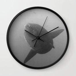 Mola mola sunfish in B&W Wall Clock