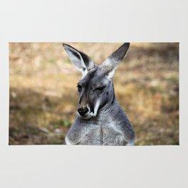 Grey Kangaroo Rug