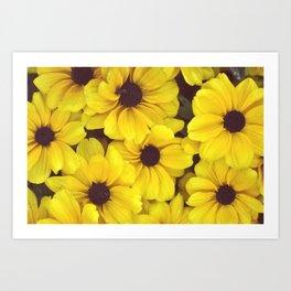 The yellow flowers Art Print