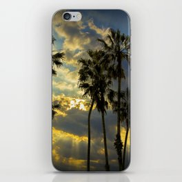 Sunbeams and Palm Trees by Cabrillo Beach Los Angeles California iPhone Skin