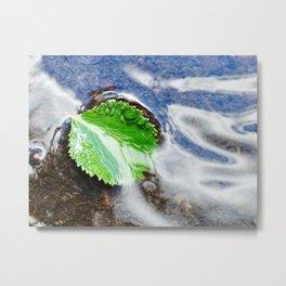 Mountain creek - birch leaf Metal Print