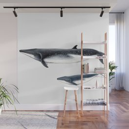 Bryde´s whale and baby whale Wall Mural