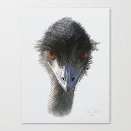 Suspicious Emu Stare, watercolor Canvas Print