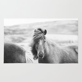 Horse Photograph in Iceland Rug