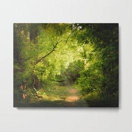 The Secret Path Metal Print