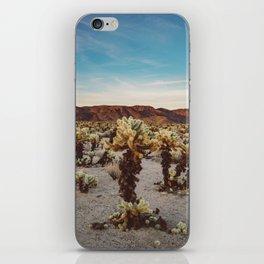 Cholla Cactus Garden II iPhone Skin