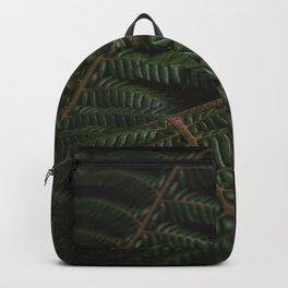 Fern 3 Backpack