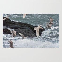 Gulls shop for Dinner Rug
