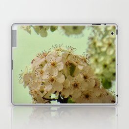 Spring Flowers on mint green background A377 Laptop & iPad Skin