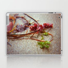 Sea Ranch seaweed 2 Laptop & iPad Skin