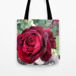 Portrait of a Rose Tote Bag