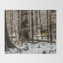 Deer in the Glistening Forest by Teresa Thompson Throw Blanket