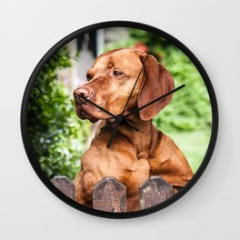 Scilly Dog Wall Clock