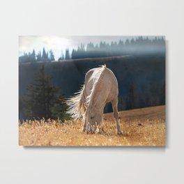 Wild Horse Cloud Metal Print