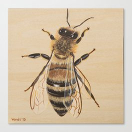Bee III (Sampson) Canvas Print
