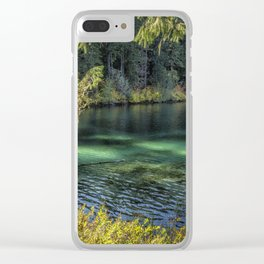 Emerald Tones of Clear Lake Clear iPhone Case