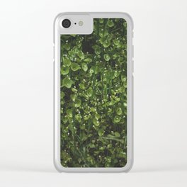 hedge Clear iPhone Case