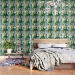 Bird of Paradise Photography, Green Orange Aqua Blue, Tropical Flower Nature Botanical Wallpaper