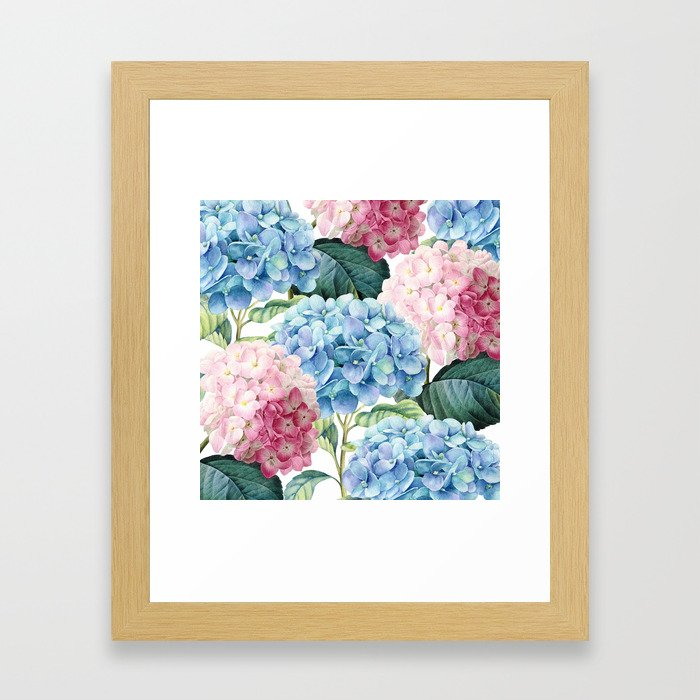 Pink Blue Hydrangea Framed Art Print