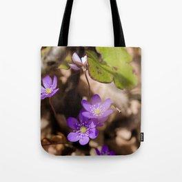 Anemone hepatica Tote Bag