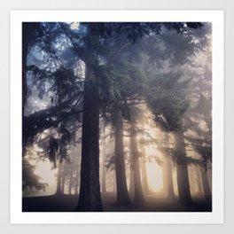 Foggy Morning in the PNW Art Print
