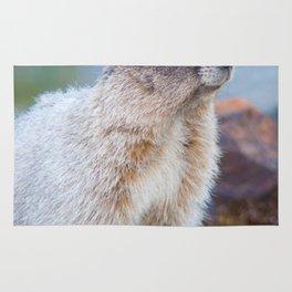 The Marmot Rug