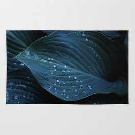 Hosta Leaves with Water Droplets Rug