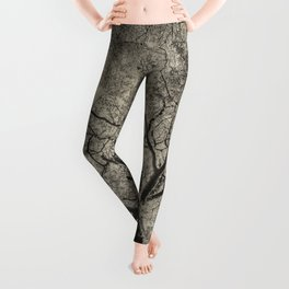 The old oak tree Leggings