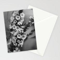 Baby's Breath B&W Stationery Cards