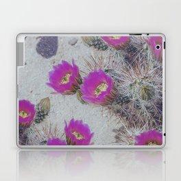 Cactus Bloom Carpet Laptop & iPad Skin