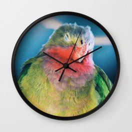 rainbow bird Wall Clock