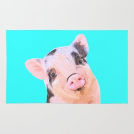 Baby Pig Turquoise Background Rug