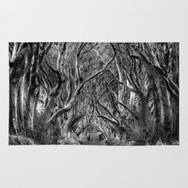 Avenue of trees Rug
