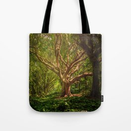 Huge Tree Middle Of Forest Tote Bag