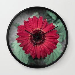 A Full Frontal Closeup of a Red Daisy Wall Clock