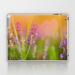 Towards the summer Laptop & iPad Skin