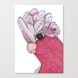 Pink Patterned Illustrated Galah Canvas Print