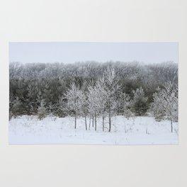 Beautiful Ice Storm Rug
