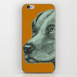 Critter Sketch iPhone Skin