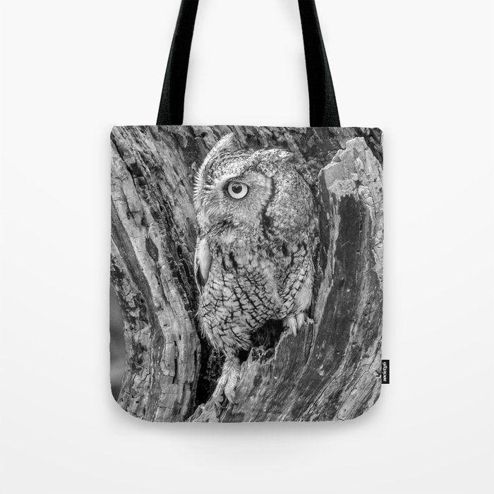 Echo the Screech Owl by Teresa Thompson Tote Bag