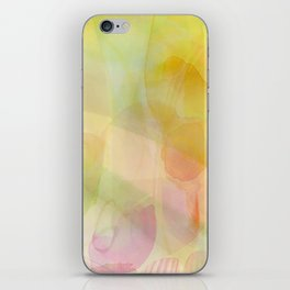 Field of Wildflowers iPhone Skin