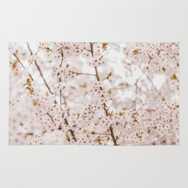 Honey bee blossom Rug