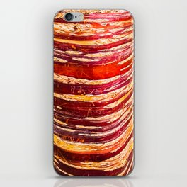 Red, yellow, brown bark of a tree - autumn colours of nature iPhone Skin