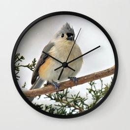I Am Titmouse. Hear Me Roar! Wall Clock