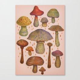 Sunshine Stalkers Canvas Print