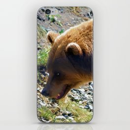 Griz - Wildlife Art Print iPhone Skin