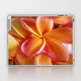 Jett Laptop & iPad Skin