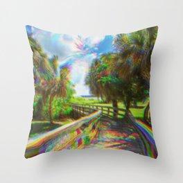 Trippy Walkway Throw Pillow
